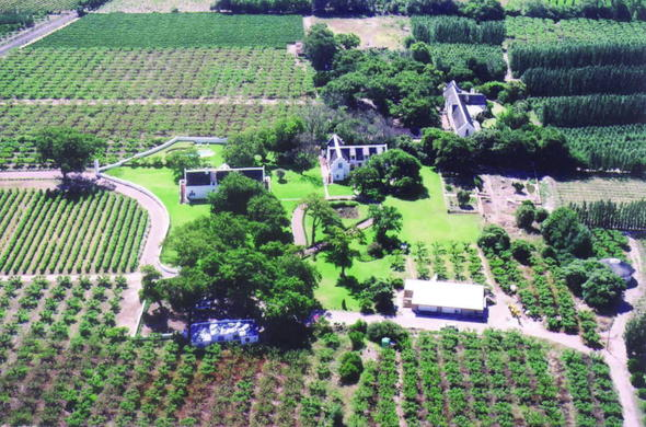 Aerial view of Palmiet Valley Estate.