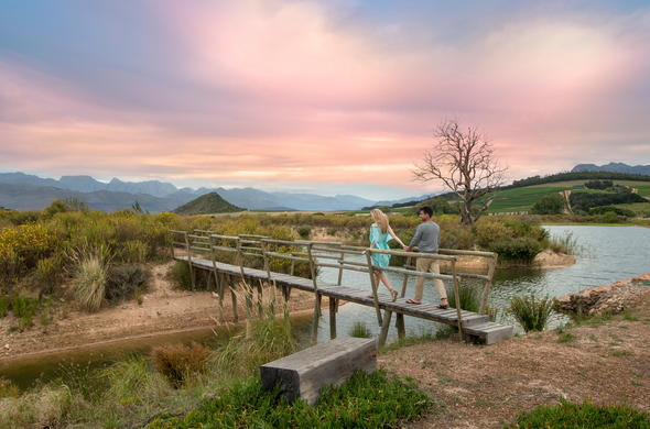 Explore the magical Cape Winelands after your conference.